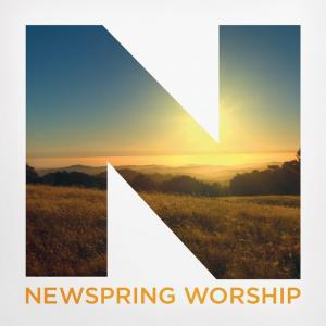 Our Great God by NewSpring Worship Chords and Sheet Music