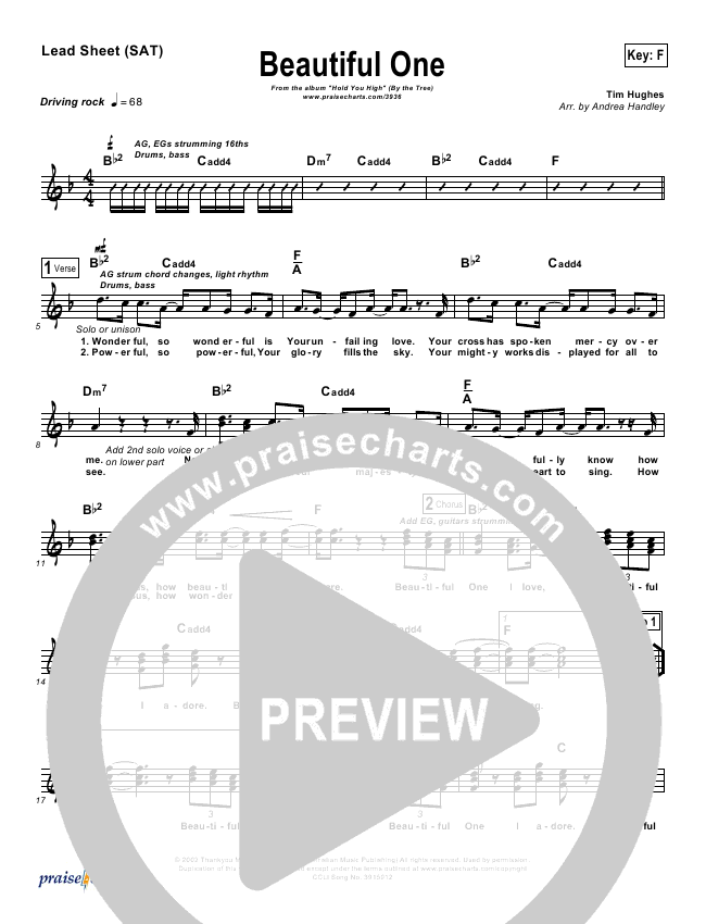 Beautiful One Lead Sheet (By The Tree)