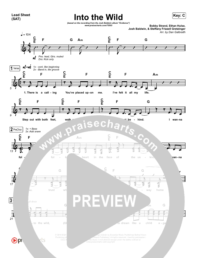 Into The Wild Lead Sheet (SAT) (Josh Baldwin)