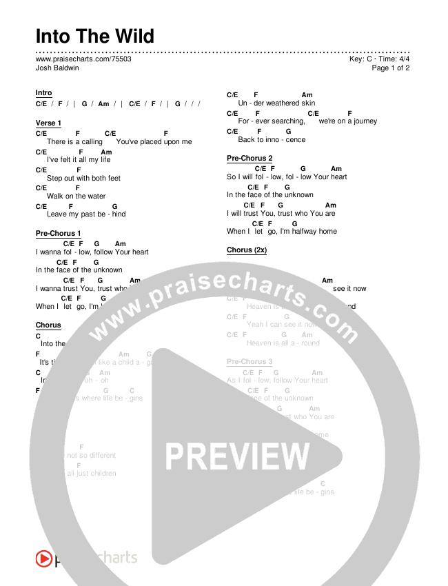 Into The Wild Chords & Lyrics (Josh Baldwin)