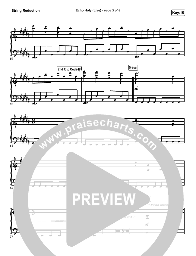 Echo Holy String Pack (Red Rocks Worship)